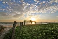 nicaragua beach palapa